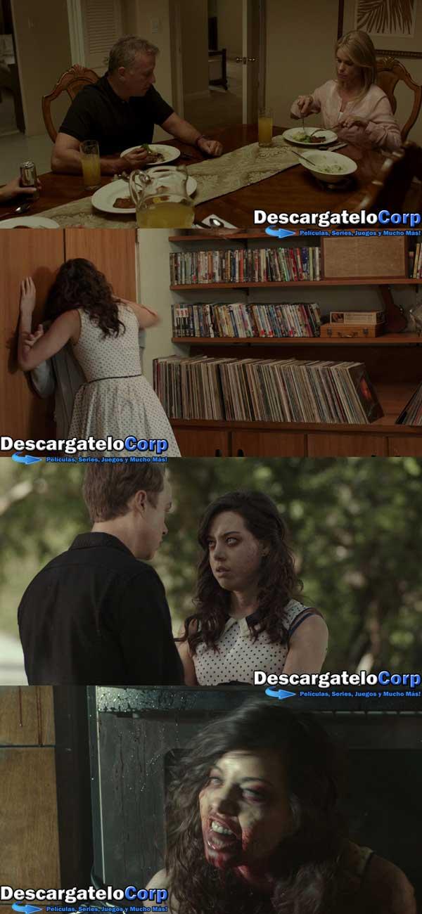 Life After Beth HD 1080p Latino