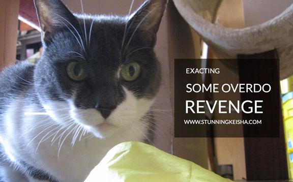 Exacting Some Overdo Revenge