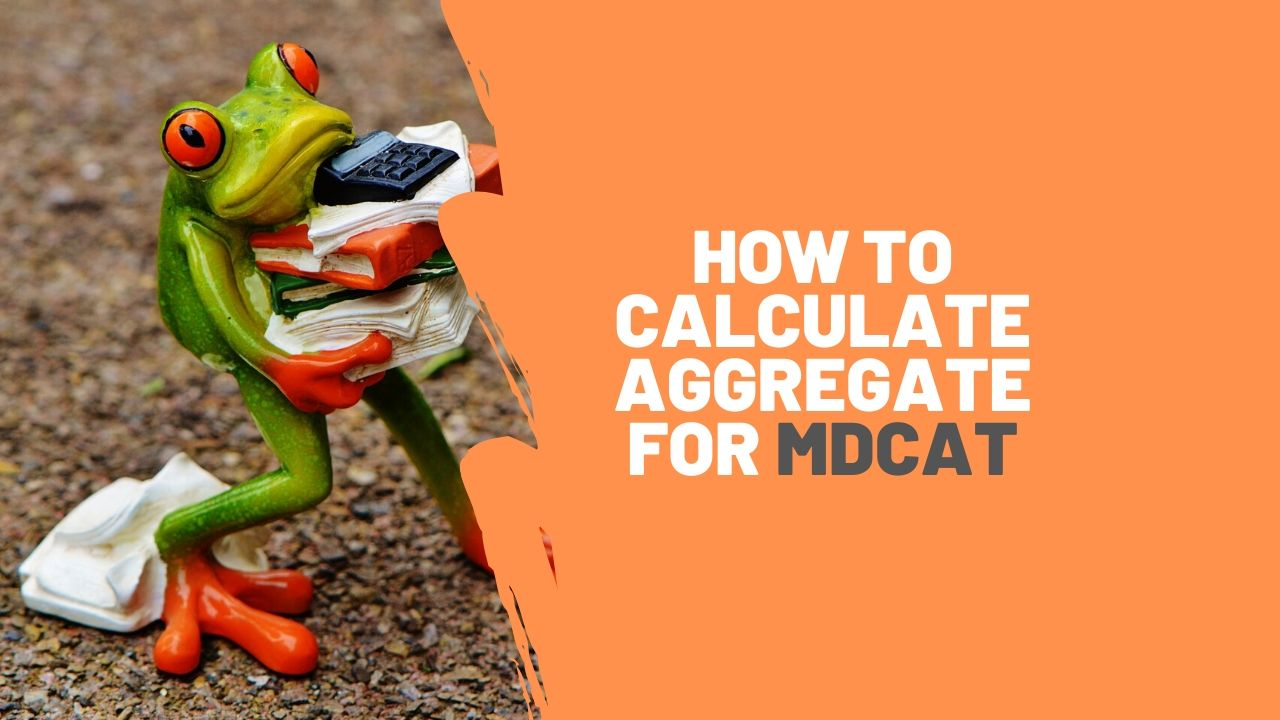 A frog metaphor for calculating aggregate for MDCAT