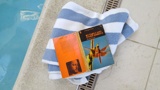 book by the pool