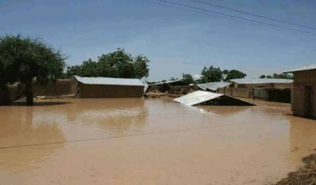 Flood kills 49 in Katsina, many still missing