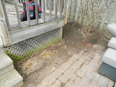 Paul Jung Gardening Services a Toronto Gardening Company The Junction Spring Backyard Garden Cleanup After