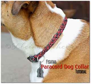 diy-paracord-dog-collar-tutorial