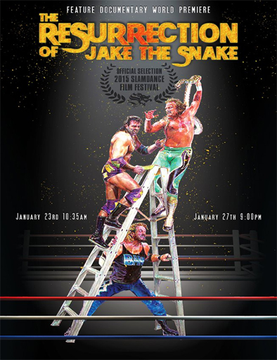 Ver The Resurrection of Jake The Snake Roberts (2015) Online