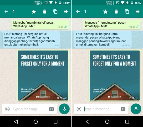 cara menandai pesan penting di WhatsApp dengan fitur star