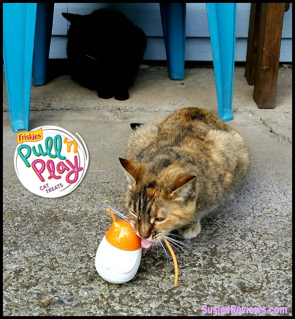 Friskies® Pull 'n Play