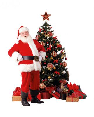 Hasil gambar untuk gambar pohon natal terbaru
