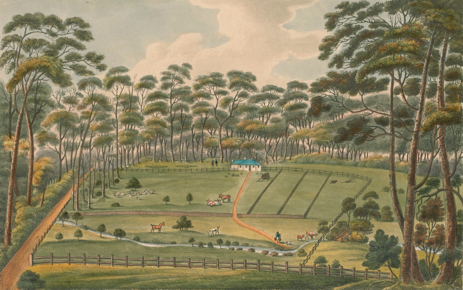 Raby. A Farm belonging to Alexander Riley Esqr. New South Wales 1825