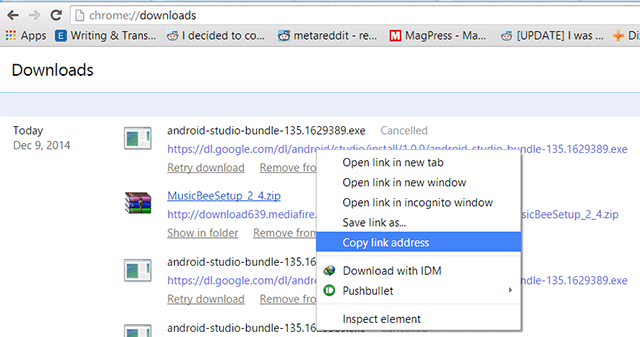 chrome download from url