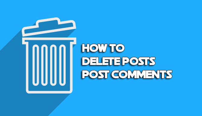 How to delete posts post comments