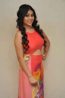 Actress Hamida Picture Gallery at Bhadram Be Careful Brother Audio Launch 0024