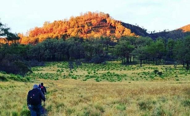 Mount Lawu