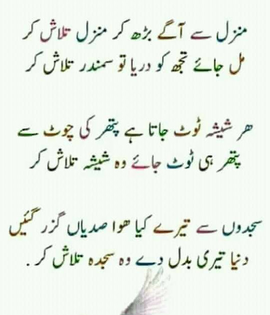 urdu poetry Pashtu Poetry funny pics poetry quotes ziabse fb