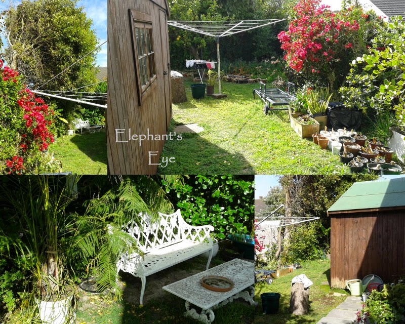 Twirldry, Wendy house, orphaned pot plants and bench