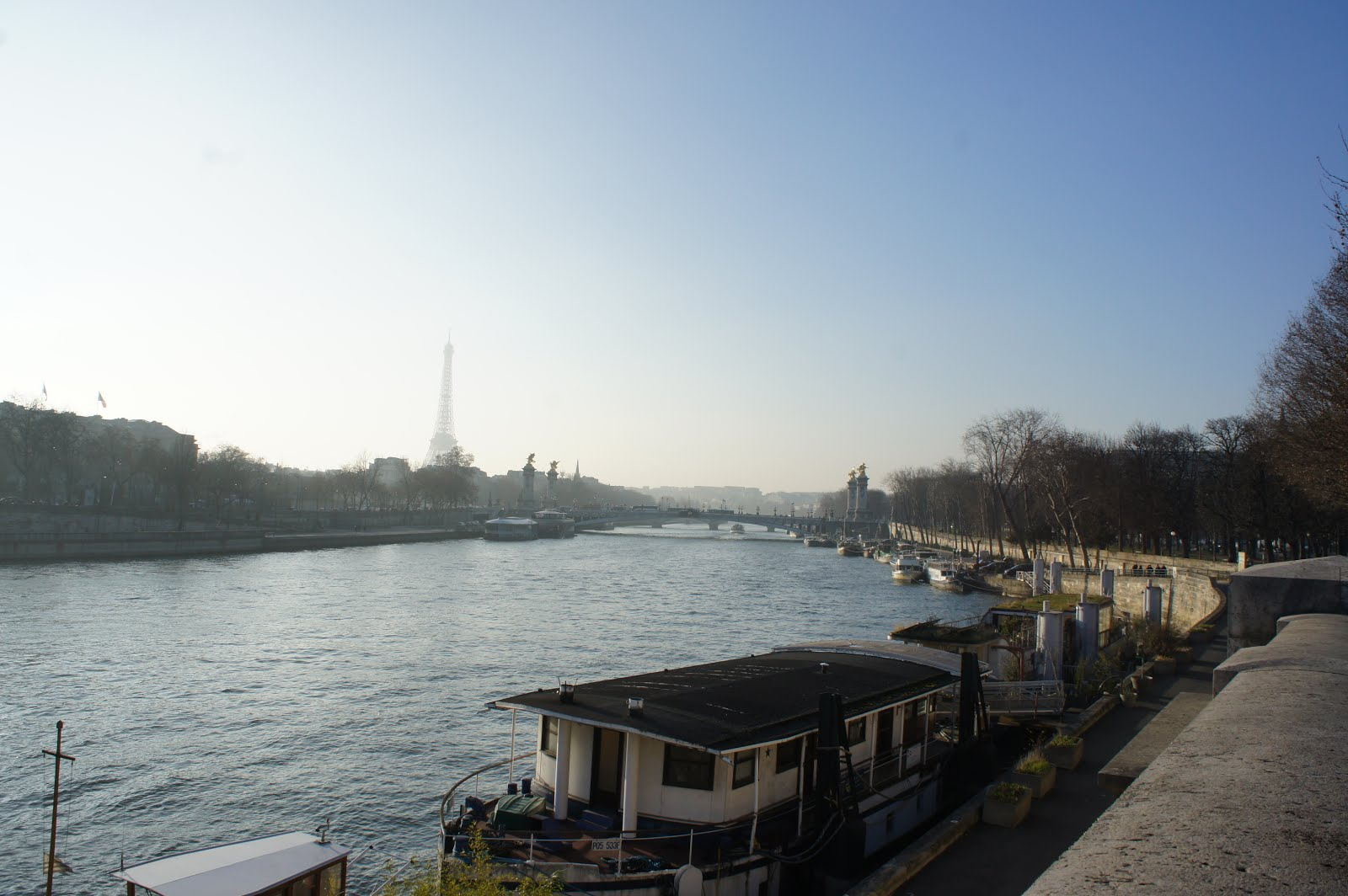 View of the Eiffel Tower and the Pont Alexandre III overlooking the Seine River in Paris
