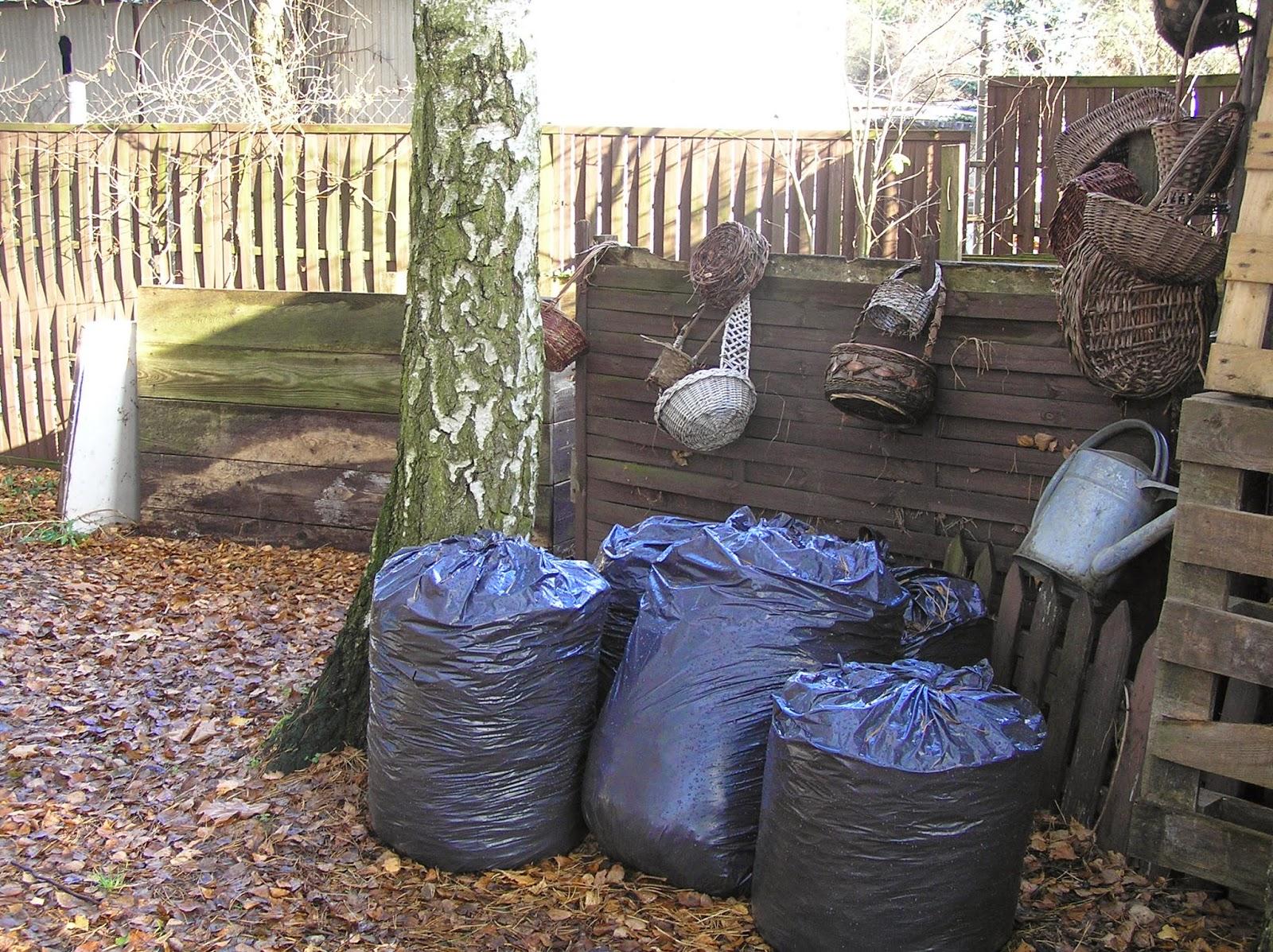 wory z kompostem liściowym