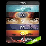 Cosmos: Una Odisea de Tiempo y Espacio (2014) HDTV 720p Audio Dual Latino-Ingles 5.1