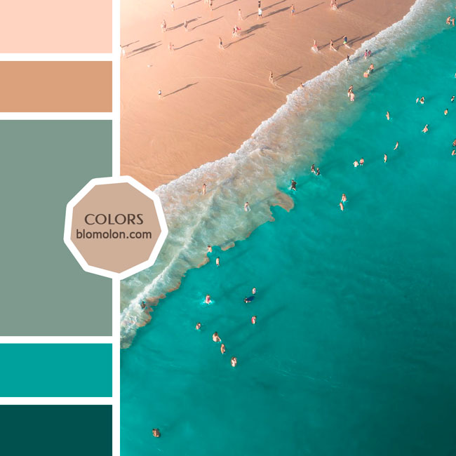 variedad_en_color_moodboard_87