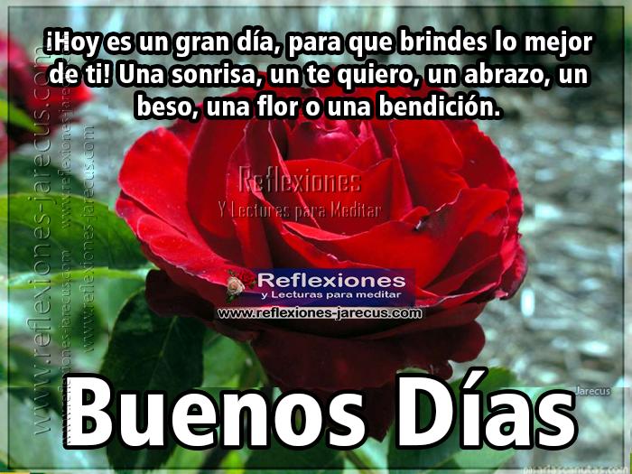 Hoy es un gran día, para que brindes lo mejor de ti. Una sonrisa, un te quiero, un abrazo, un beso, una flor o una bendición. Buenos días
