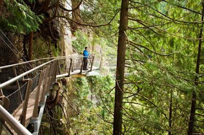 menikmati keindahan alam dari jembatan capilano
