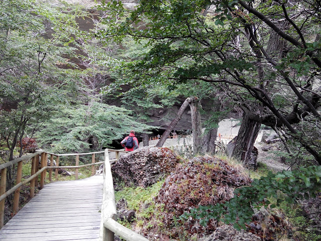 Camino a la cueva del Milodón