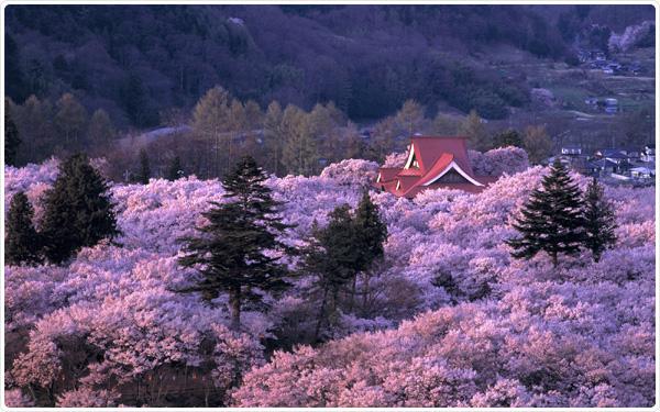 Takada Castle, Niigata, Japan.