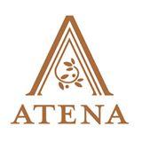 http://www.atena.fi/component/ateena/kirja/745