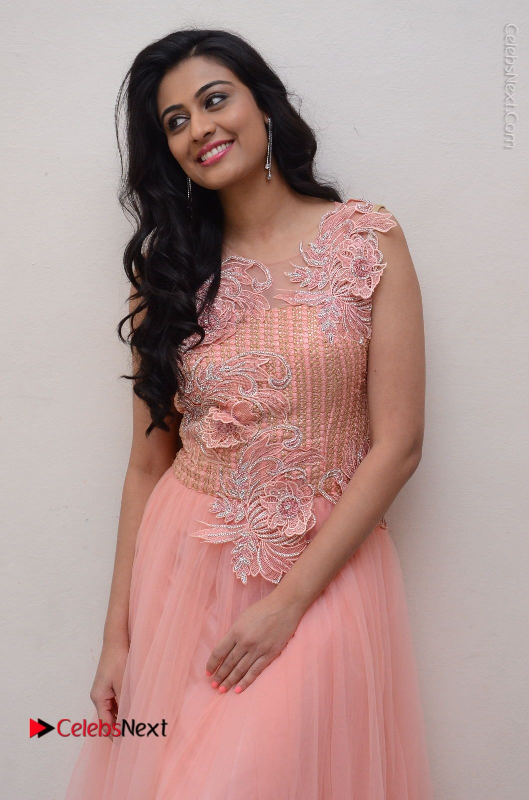 Neha Hinge Stills in Pink Long Dress at Sri Valli Teaser Launch