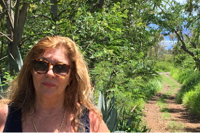 French Village Diaries France et Moi interview Carol Drinkwater The Forgotten Summer blog tour