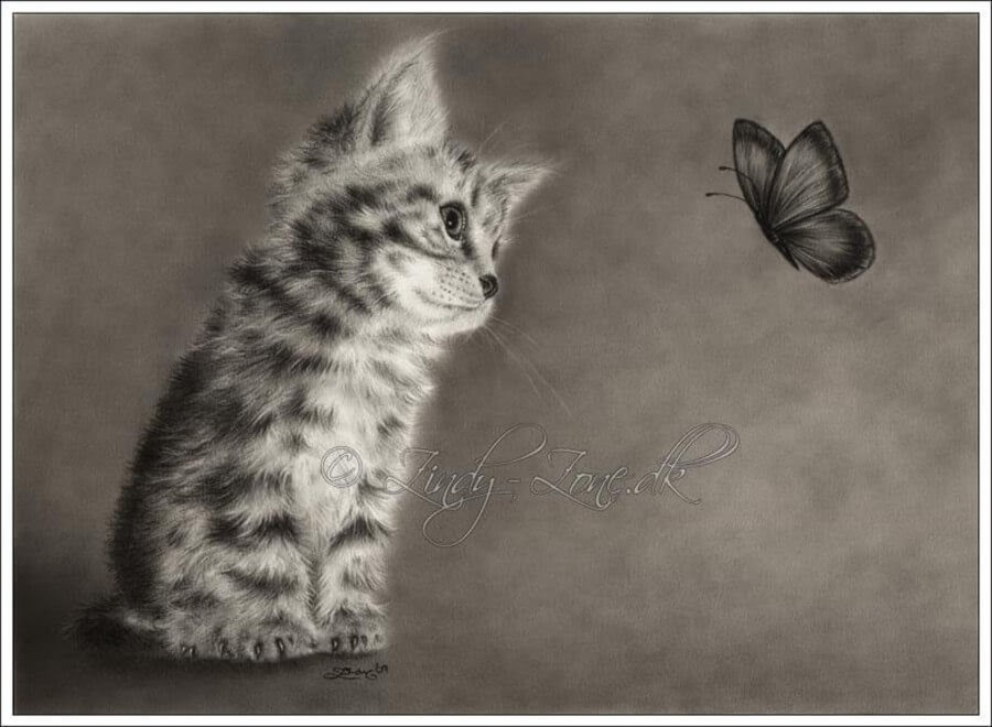 04-Butterfly-Kitten-Zindy-Nielsen-Fantasy-Animals-Meet-Realistic-Ones-www-designstack-co