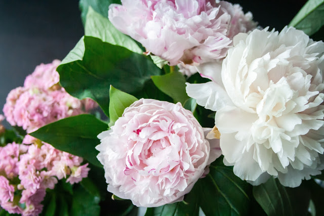 bunch%2Bof%2Bpeonies.jpg