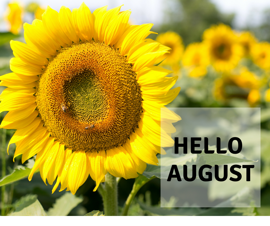 Smile for no reason: Welcome August with the August Wellness Box