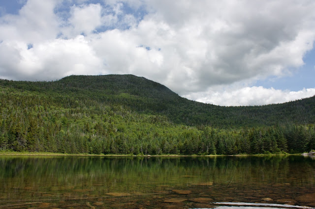 A remote wild brook trout pond in the White Mountains of NH.