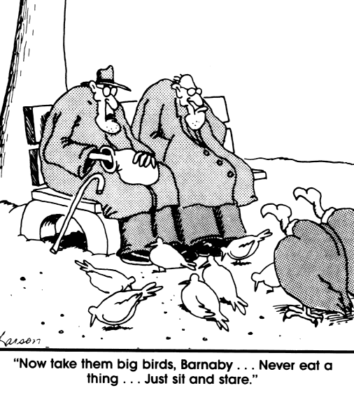 Far Side: Now take them big birds, Barnaby ... Never eat a thing ... Just sit and stare.