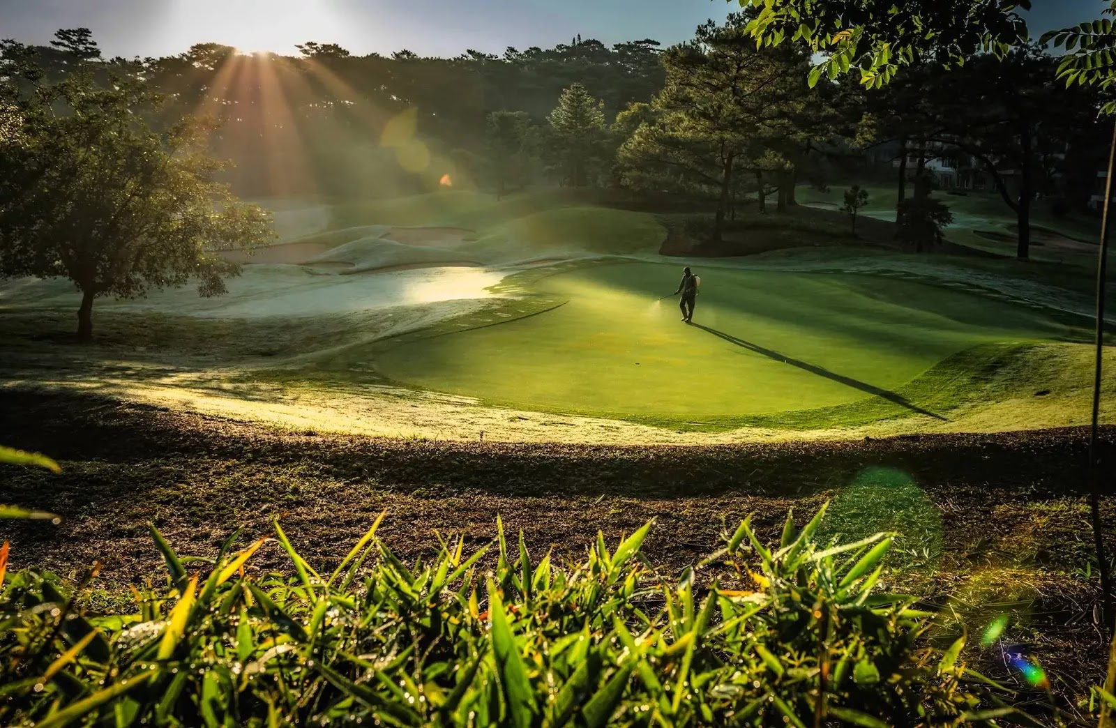 One Morning Baguio City Private Golf Course Cordillera Administrative Region Philippines
