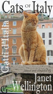 cat photos book