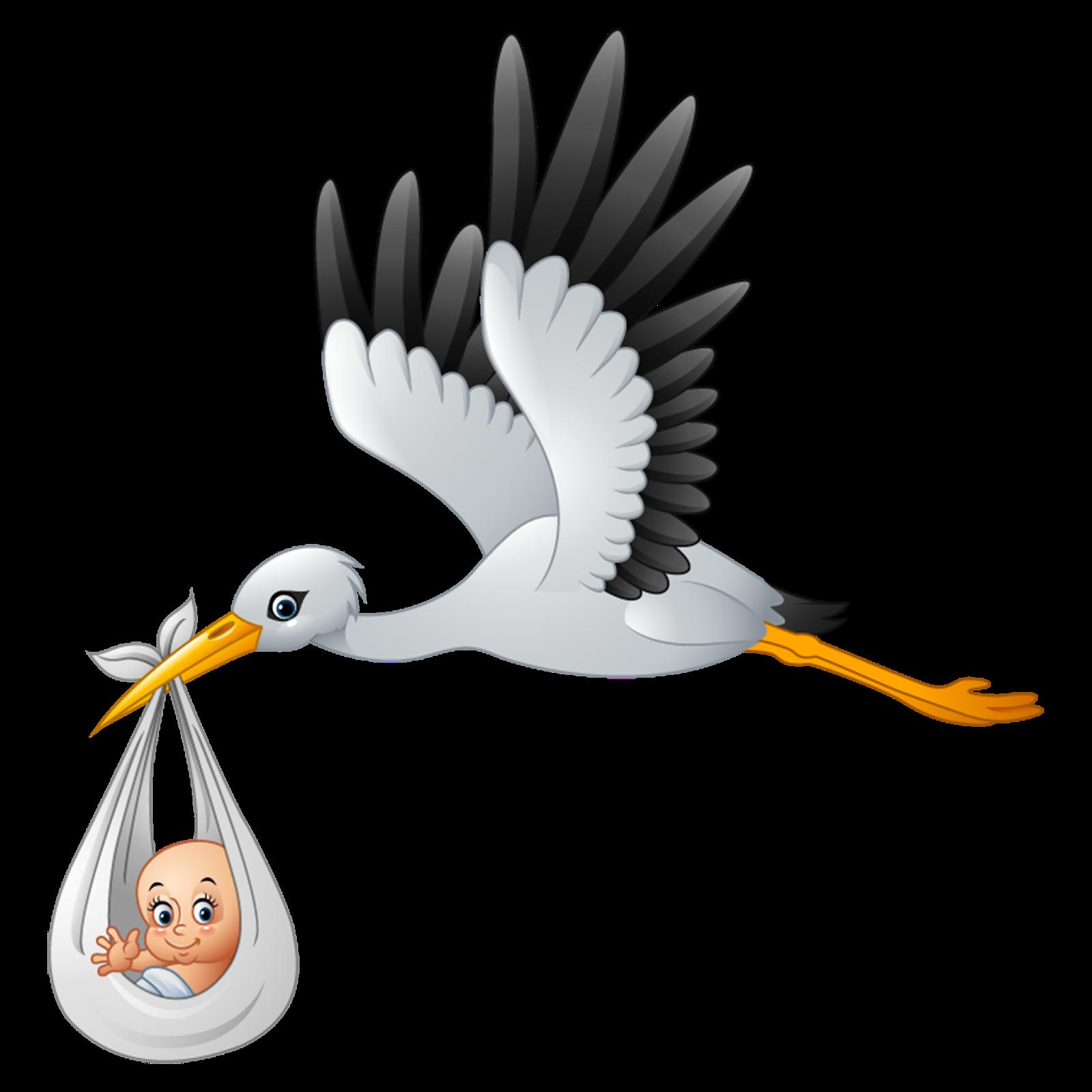 imagens png de cegonhas imagens para photoshop stork delivering baby clip art stork carrying baby clipart