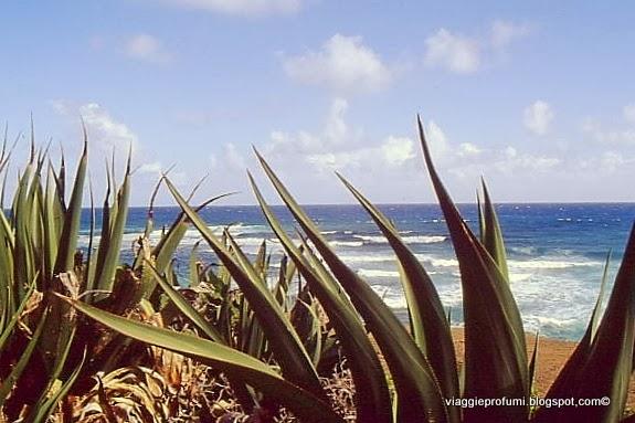 La Dèsirade, Piccole Antille Francesi