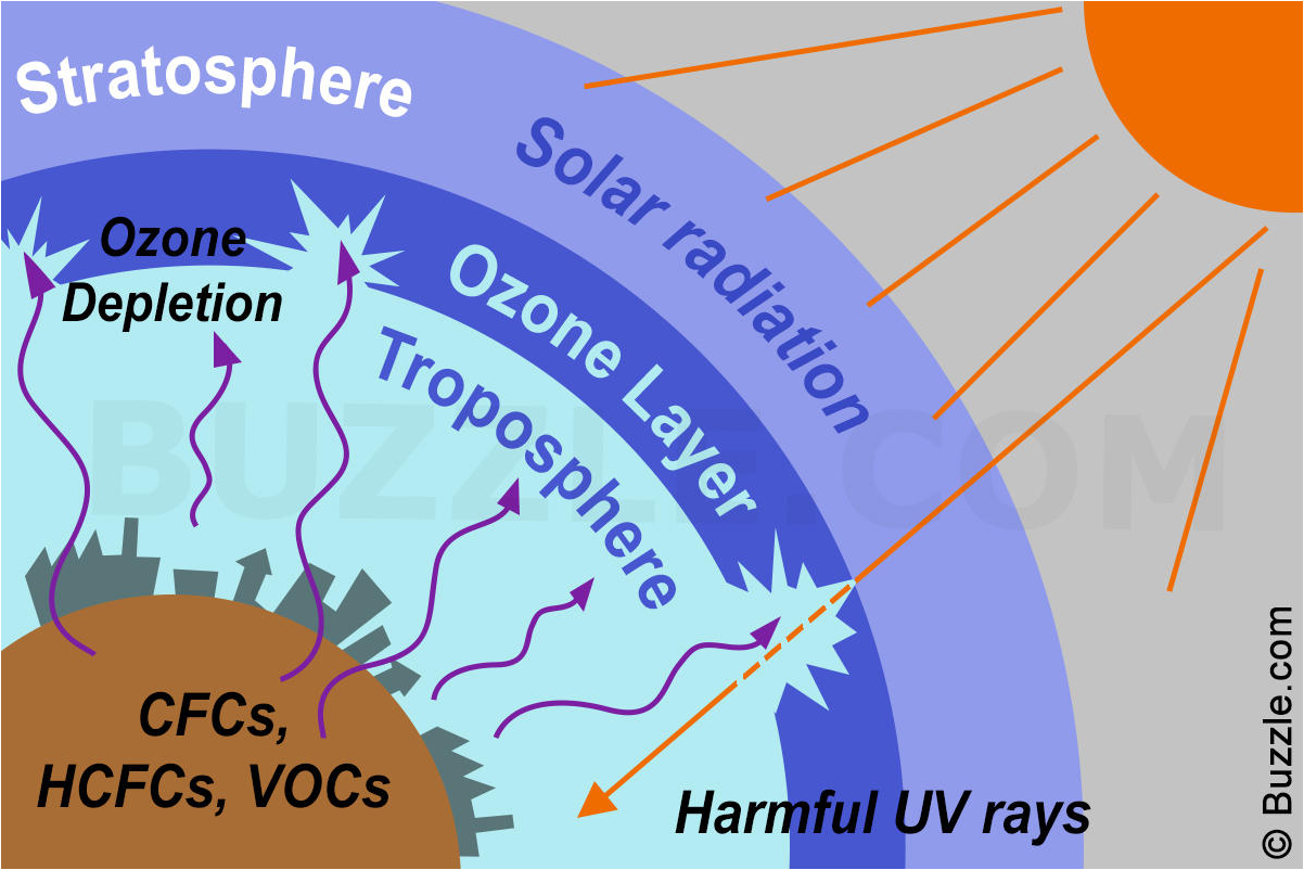 Causes And Effects Of Ozone Depletion