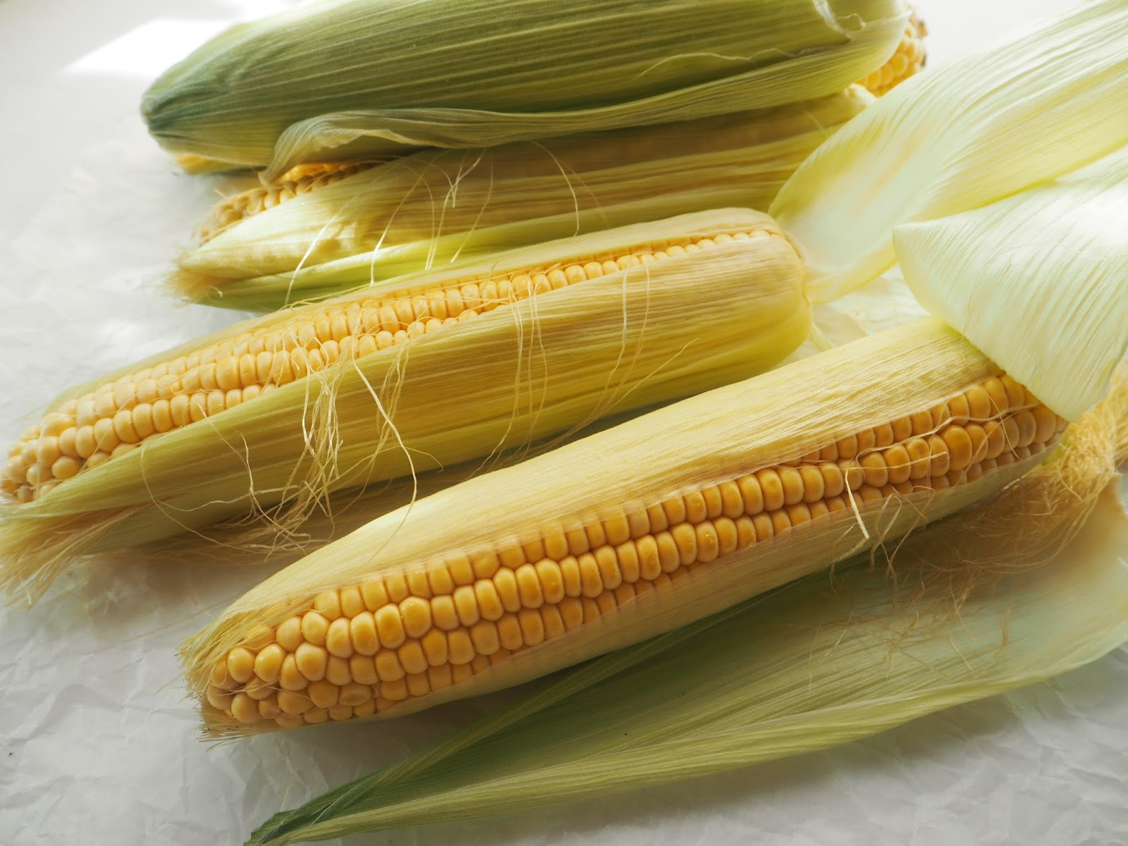 Maissista