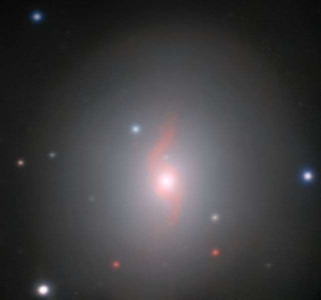 VLT/MUSE image of the galaxy NGC 4993 and associated kilonova