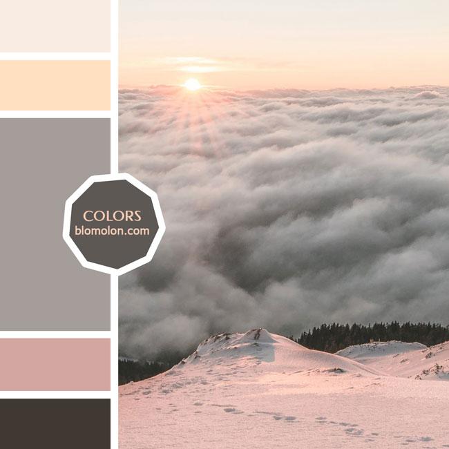 variedad_en_color_moodboard_71