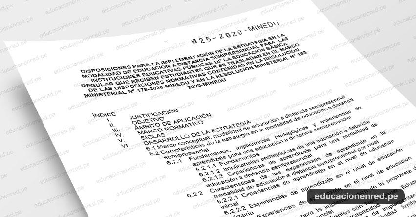 MINEDU publicó Anexos de la R. VM. N° 125-2020-MINEDU que aprueba la estrategia de educación a distancia semipresencial