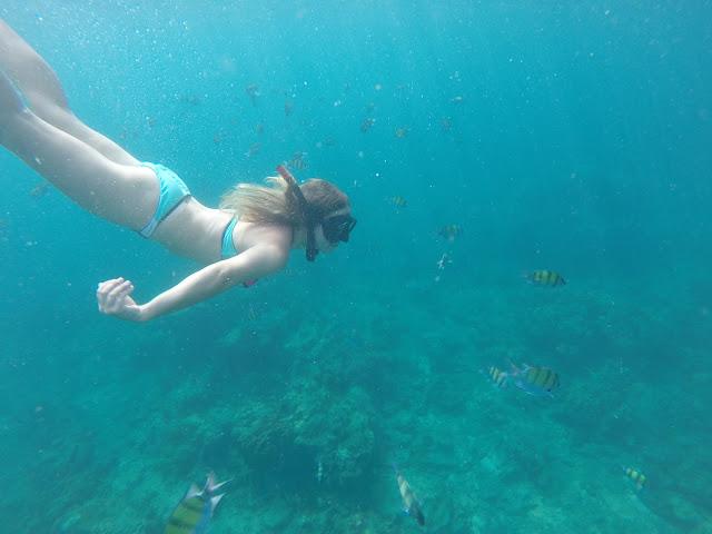 snorkelling maya bay thailand
