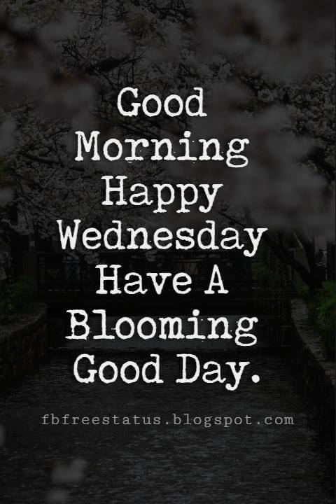 Happy Wednesday Pictures, Good Morning Happy Wednesday Have A Blooming Good Day.