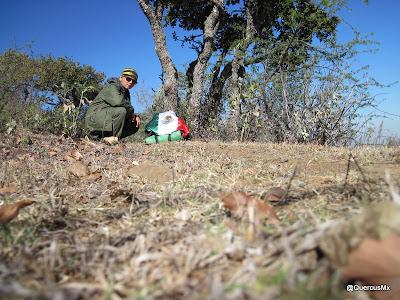 Jalisco es México - QuercusMX en la Sierra de San Juan Cosalá
