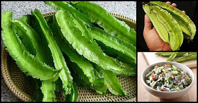 More Reasons To Love Sigarilyas (Winged Beans)