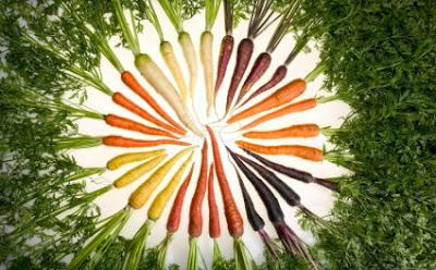 Ημερολόγιο Καλλιεργειών