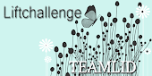 Teamlid Lift Challenge Blog