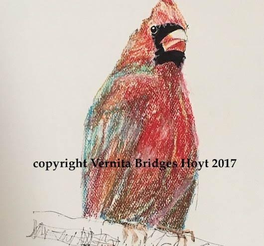 Cardinal Red Bird, pastel and ink drawing by Texas artist